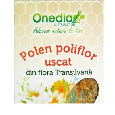 Polen poliflor uscat, 110 g, Onedia
