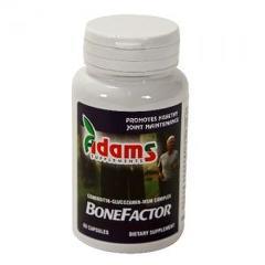 BoneFactor GS / Condroitin / MSM 60cps