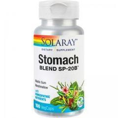Stomach Blend 100 capsule easy-to-swallow