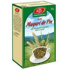MUGURI DE PIN, punga a 50 gr
