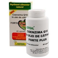 COENZIMA Q10 ULEI DE  CATINA FORTE+ 60MG 40CPS MOI